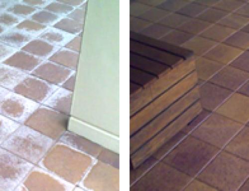 Efflorescence and Salt  removal