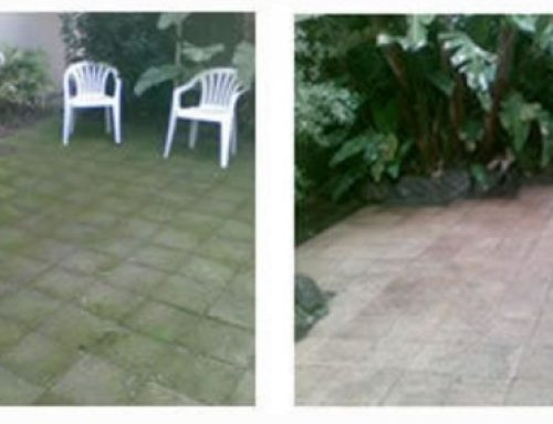Don't replace your dilapidated pavement – arrange a comprehensive clean instead!
