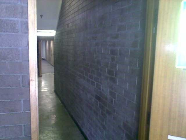 Salt deposit removal from brick wall