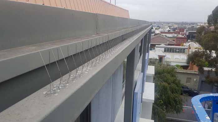 bird spikes being installed on roof