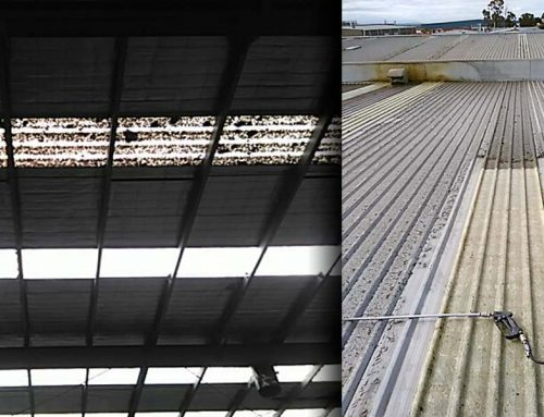 Cleaning Warehouse Skylights
