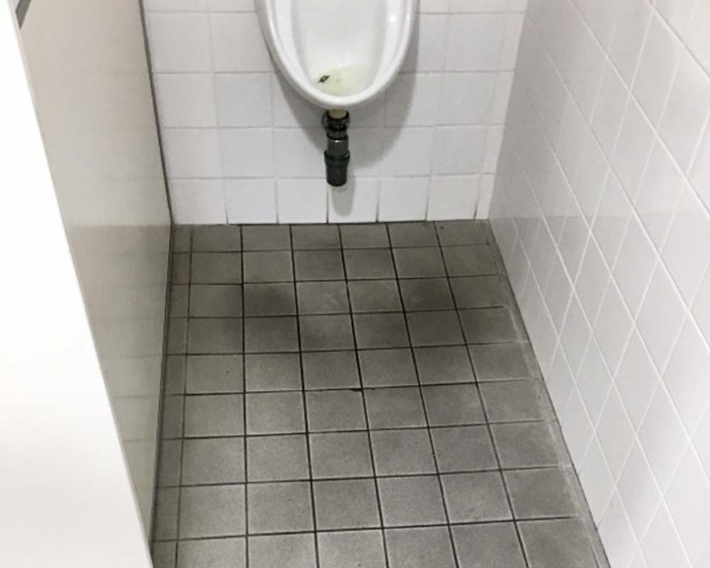 toilet urine stain removal